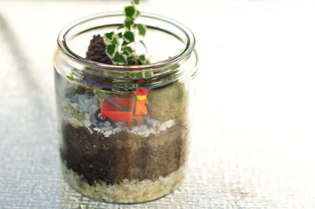 DIY Terrarium For Kids | Fun And Easy Kids Gardening Ideas To Do This Summer Vacation